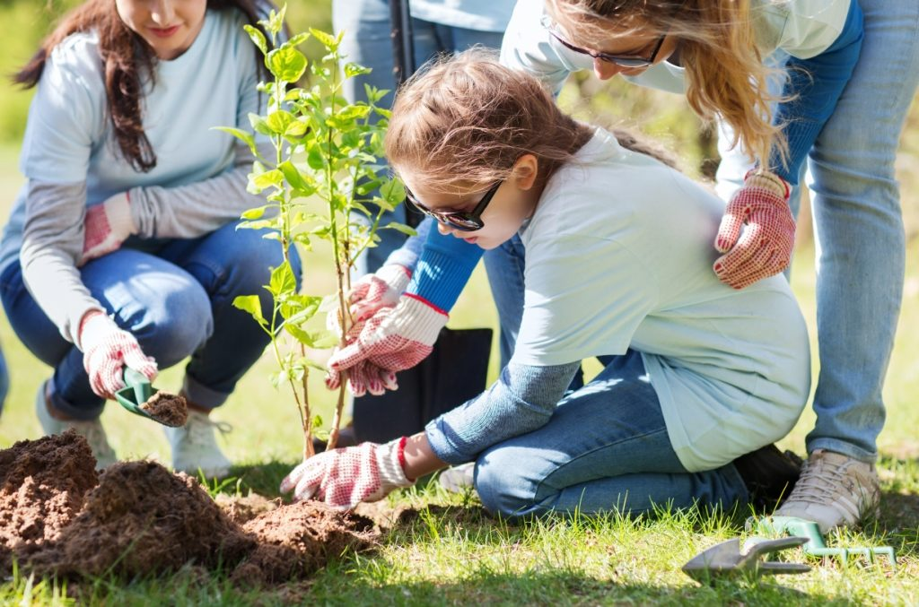 Three women help a young child to plant a small tree