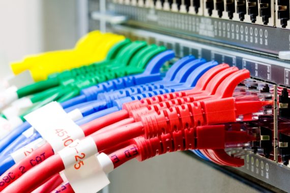 A row of colourful network cables plugged into a server