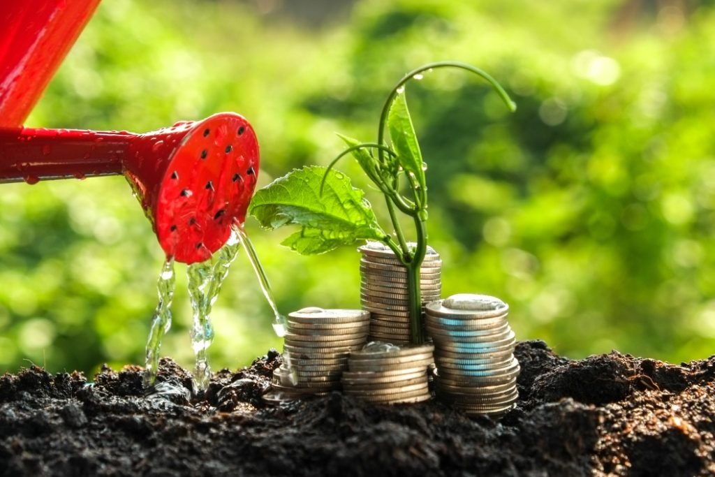 Watering soil, out of which a plant and some coins are growing